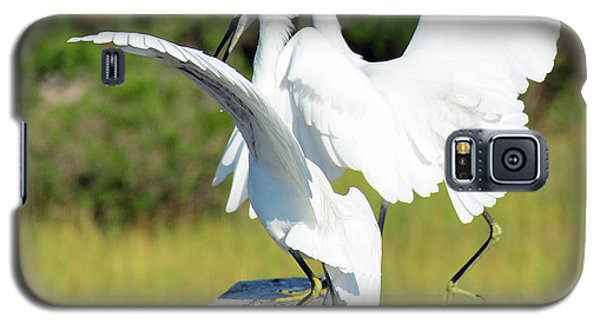 Dancing Snowy Egrets Galaxy S5 Case