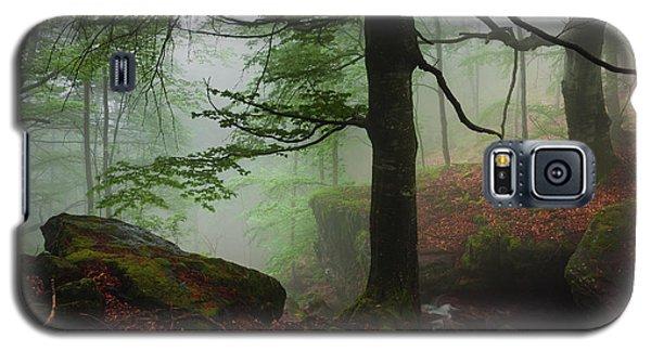 Dark Forest Galaxy S5 Case