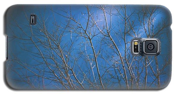 Dark Winter Galaxy S5 Case