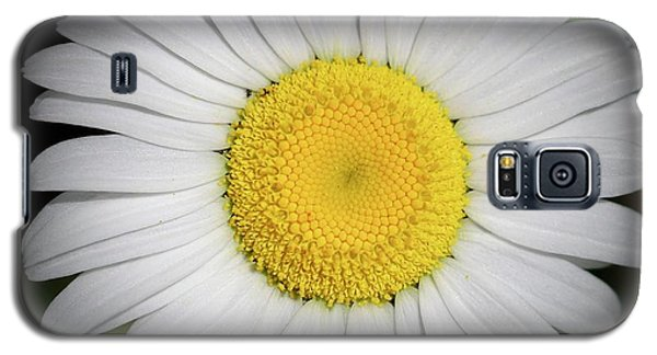 Day's Eye Daisy Galaxy S5 Case