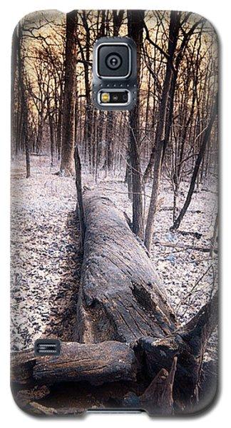 Dead Tree Galaxy S5 Case
