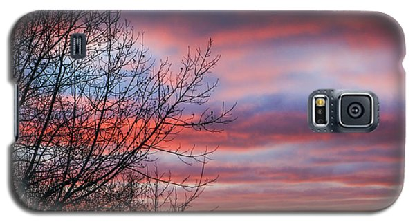 December Dawn Galaxy S5 Case