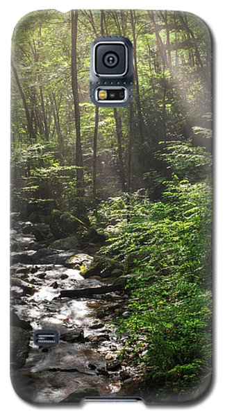 Deep In The Forrest - Sun Rays Galaxy S5 Case