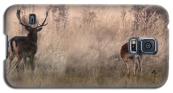 Deer In The Grasses Galaxy S5 Case