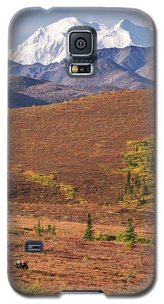 Denali Grizzly Galaxy S5 Case
