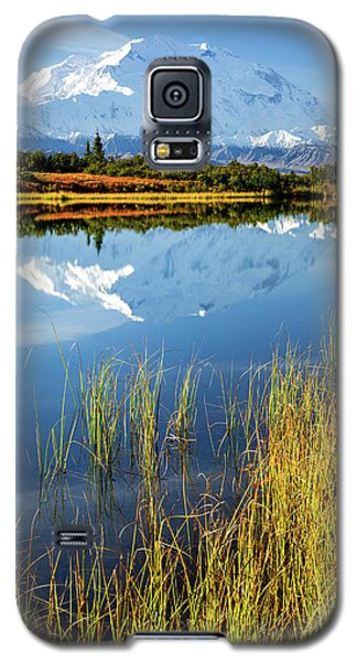 Denali Reflection Galaxy S5 Case