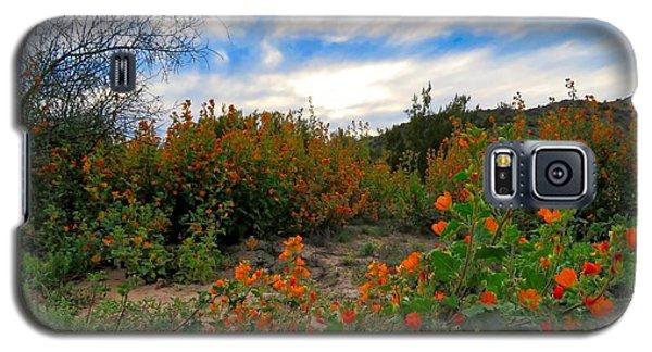 Desert Wildflowers In The Valley Galaxy S5 Case