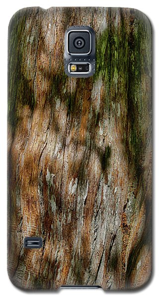 Detail Of Bark On Huge  Tree Galaxy S5 Case