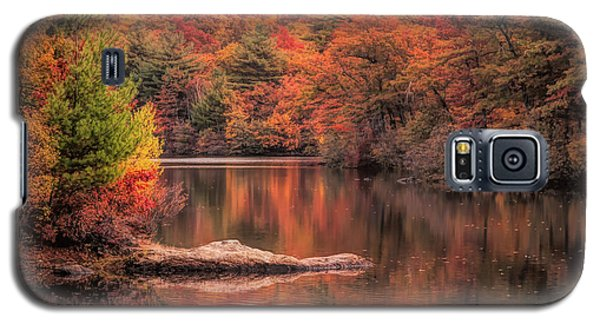 Digial Paint Of Birch Pond Galaxy S5 Case