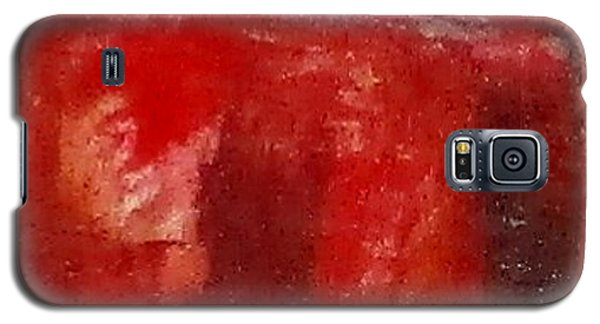 Digital Abstract N12. Galaxy S5 Case