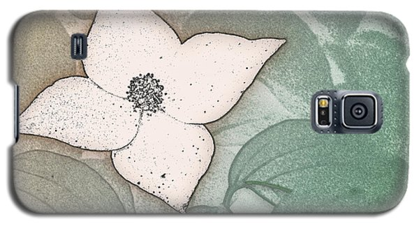 Dogwood Flower Stencil On Sandstone Galaxy S5 Case