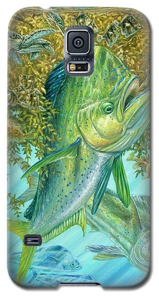 Dorados Hunting In Sargassum Galaxy S5 Case