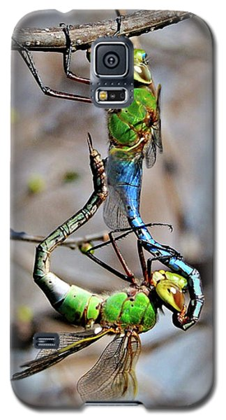 Dragonfly Love Galaxy S5 Case