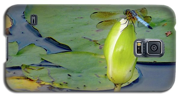 Dragonfly On Liliy Bud Galaxy S5 Case