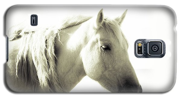 Dreamy Mare Galaxy S5 Case