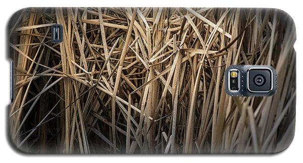 Dried Wild Grass II Galaxy S5 Case