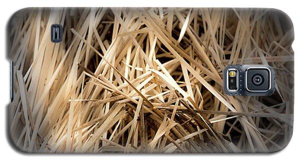 Dried Wild Grass I Galaxy S5 Case