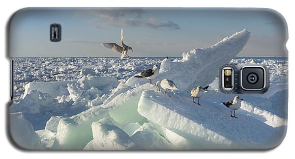 Cold Galaxy S5 Case - Drift Ice In Shiretoko, Hokkaido, Japan by Zincreative