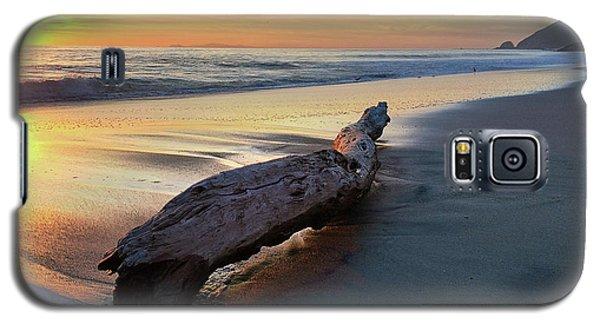 Drift Wood At Sunset II Galaxy S5 Case