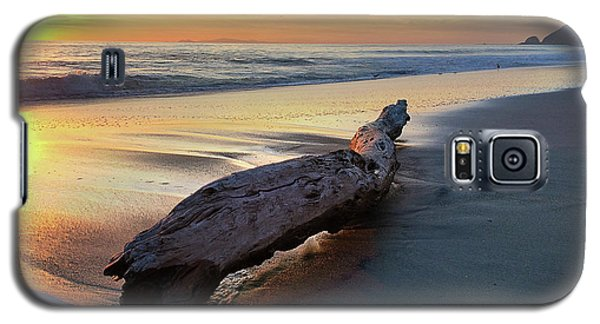 Drift Wood At Sunset II Galaxy S5 Case