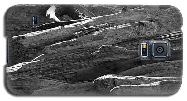 Drifted Wood Galaxy S5 Case