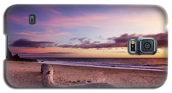Driftwood At Sunset Galaxy S5 Case