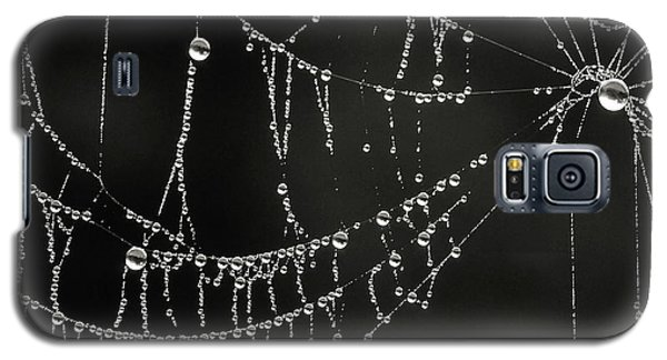 Dripping Galaxy S5 Case