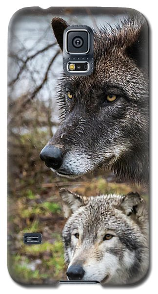 Dual Wolves Galaxy S5 Case