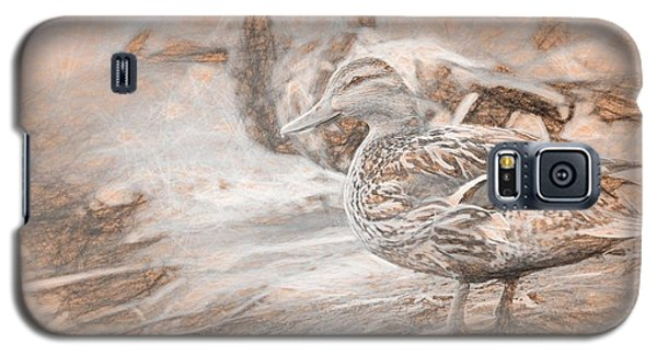 Ducks On Shore Da Vinci Galaxy S5 Case