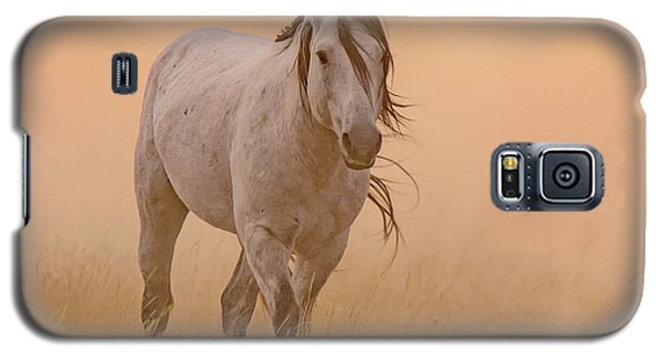 Dusty Evening Galaxy S5 Case