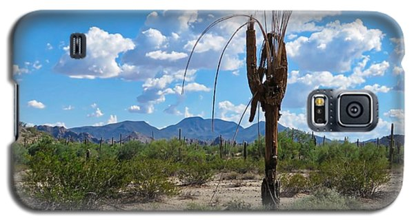 Dying Saguaro In The Desert Galaxy S5 Case