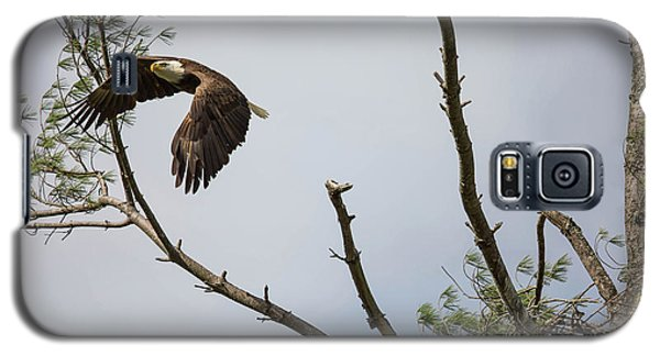 Eagle's Nest Galaxy S5 Case
