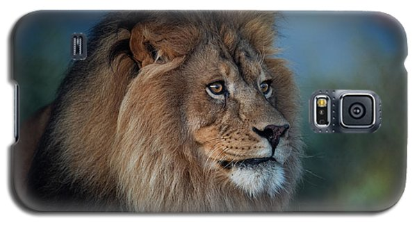 Early Morning Lion Portrait Galaxy S5 Case