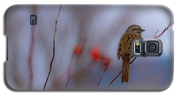 Early Spring Sparrow Galaxy S5 Case