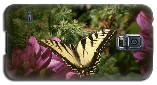 Easter Tiger Swallowtail On Rhododendron Galaxy S5 Case