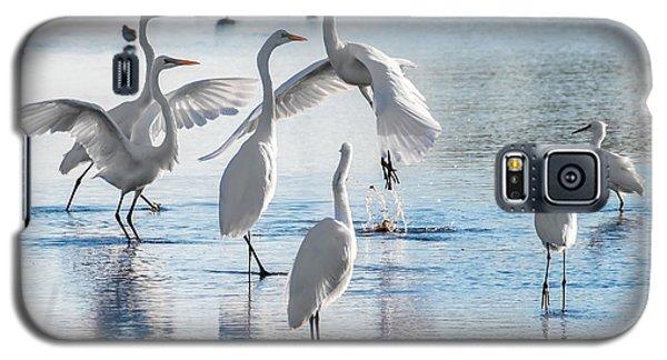 Egret Ballet 1400 Galaxy S5 Case