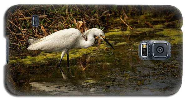 Egret Hunts Galaxy S5 Case