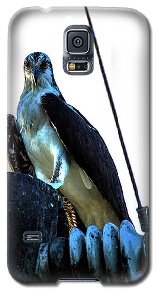 Electrifying Pose  Galaxy S5 Case