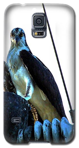 Electrifying Pose  Galaxy S5 Case