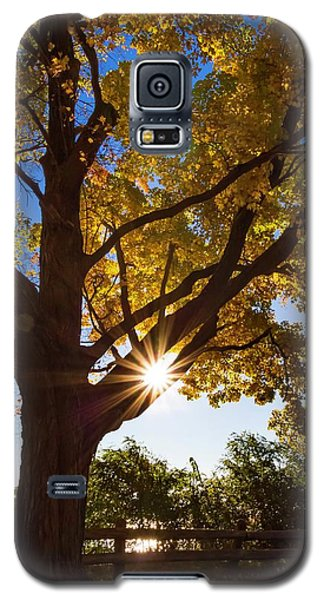 Electric Forest Galaxy S5 Case
