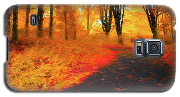 Emmaus Community Park Path - Colors Of Fall Galaxy S5 Case