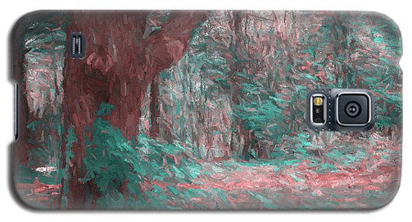 Emmaus Community Park Trail With Large Tree Galaxy S5 Case