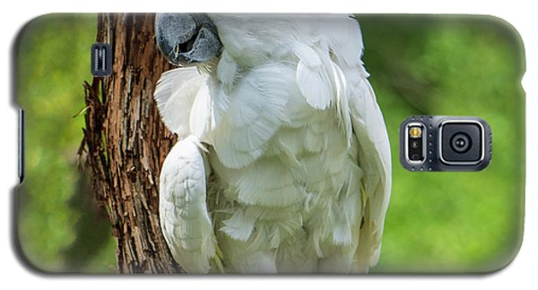 Endangered White Cockatoo Galaxy S5 Case