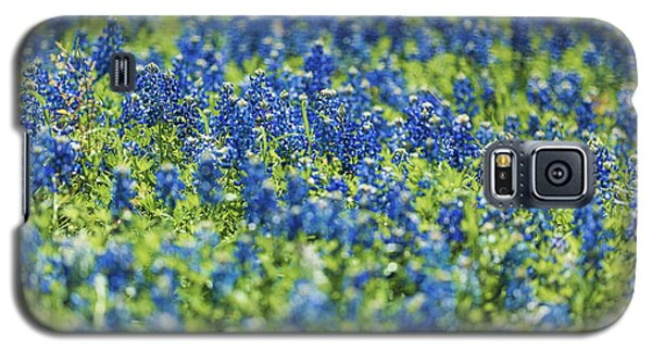 Ennis Bluebonnets Galaxy S5 Case
