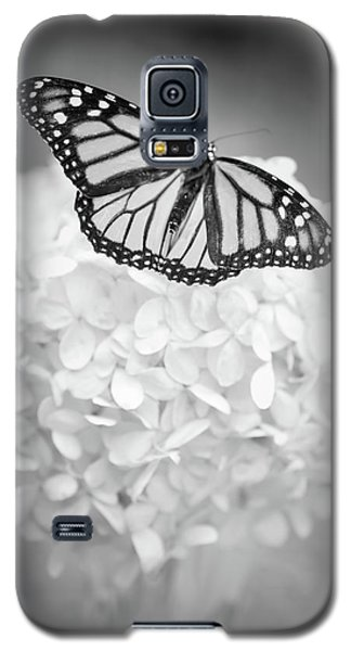 Essence Galaxy S5 Case