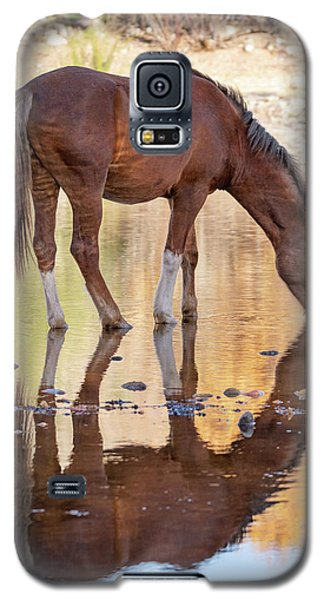 Evening Reflections Galaxy S5 Case