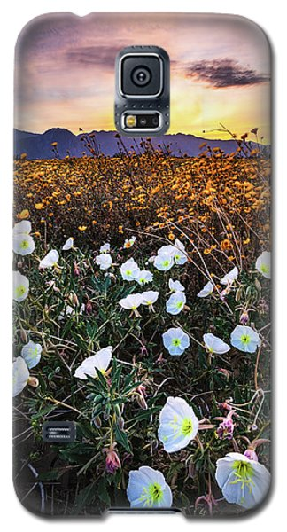Evening With Primroses Galaxy S5 Case