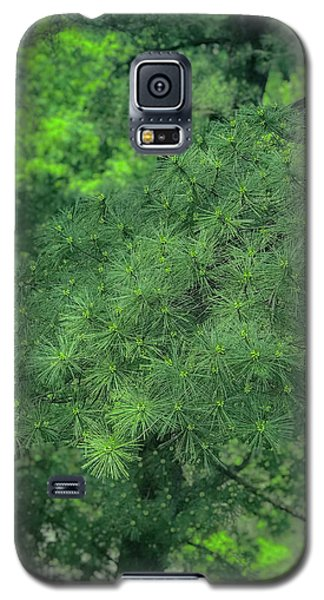 Ever Green Galaxy S5 Case