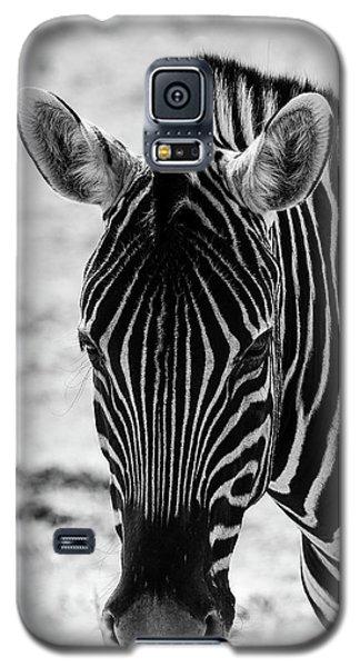 Face Of Zebra Galaxy S5 Case