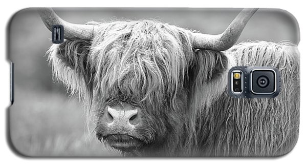Face-to-face With A Highland Cow - Black And White Galaxy S5 Case